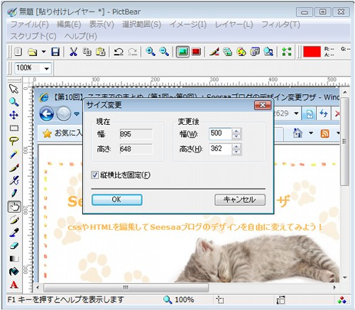 SD_017_005.jpg